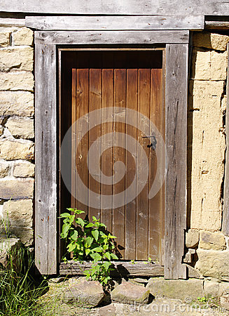 Free Old Wooden Door With Nettle Stock Photography - 47745762