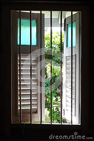 Old wooden window with garden view