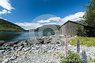 Olden fjord met boatshed