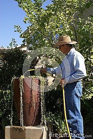 Older Man Watering/Gardner