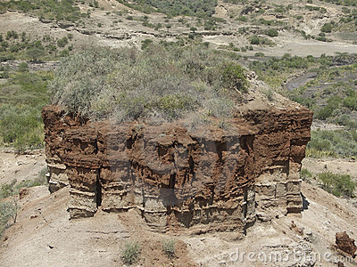 Olduvai Gorge detail