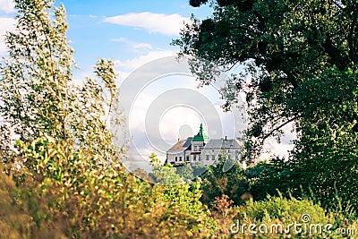 Olesko Castle - 14th century.