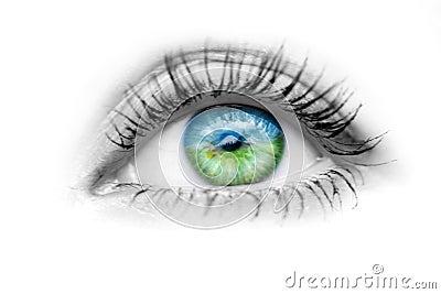 Olho Com Natureza Nos Olhos