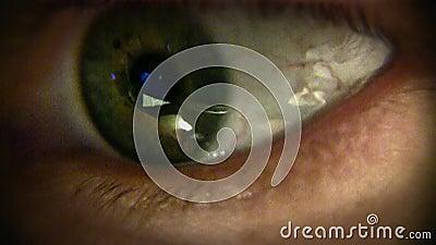 Olho humano do close-up macro vídeos de arquivo