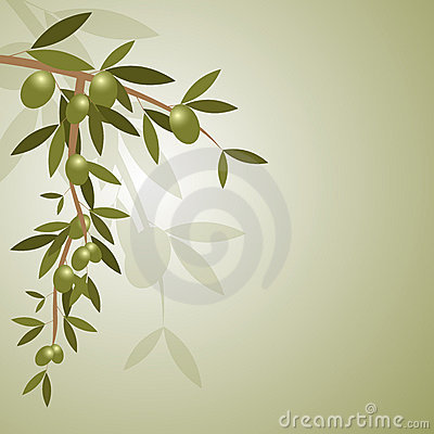Free Olive Branch Background Royalty Free Stock Photos - 16622638
