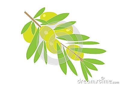 Olive brunch