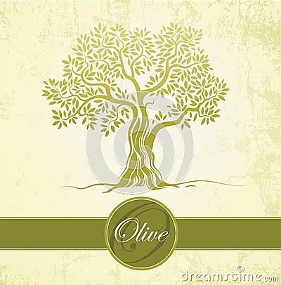 Olive tree. Olive oil. Vector  olive tree on vintage paper.For labels, pack.