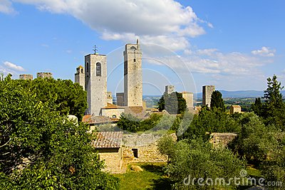 Olive Trees and Towers, Tuscany, Italy