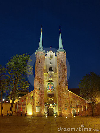 Oliwa Cathedral in the night, Poland.