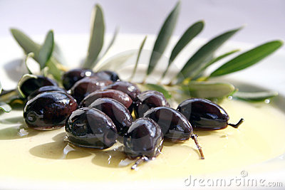 Oliwnych oleiste oliwki