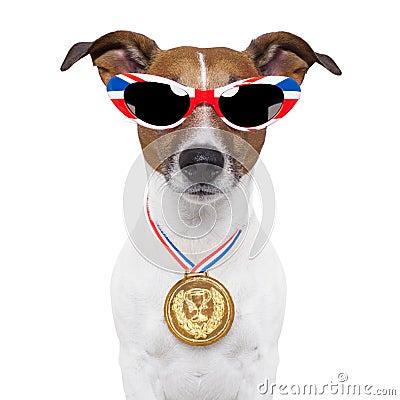 Olympic dog