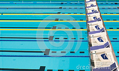 Olympic Sport Competition Swimming Pool Lanes Stock Photo Image 51927255