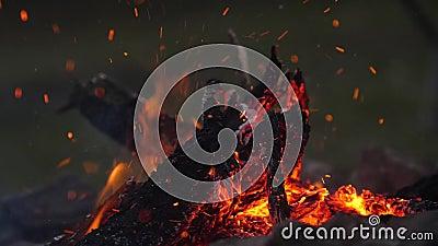 Om de brandende rode sintels te waaien Vonken die van de brand vliegen campfire Tong van vlam Langzame motie, 180fps stock footage