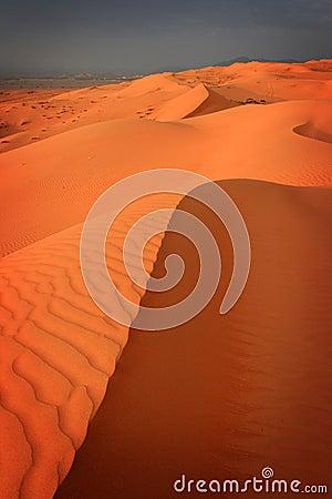 Free Oman: Wahiba Sands Stock Photo - 11228860