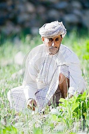 Omani Rice Farmer Editorial Stock Photo