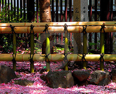 Omheining en bloemblaadjes
