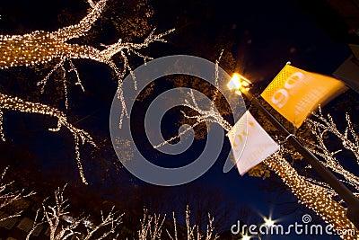 Omotesando Christmas illumination in Tokyo Editorial Image