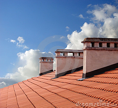 Free On A Roof Royalty Free Stock Photography - 2418427