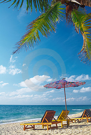 Free On The Beach Stock Photos - 2288853