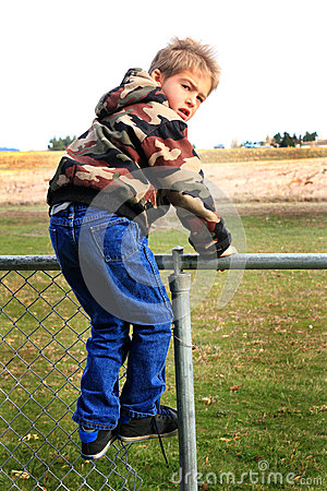 Free On The Fence Royalty Free Stock Photo - 35285395