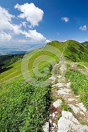 Free On The Mountain-ridge Stock Photo - 10440930
