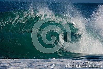 Onda de océano que se encrespa enorme