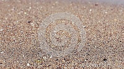 Onda macia do mar no Sandy Beach, dia ensolarado Tiro do close-up, foco seletivo filme