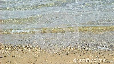 Ondas en una playa almacen de video