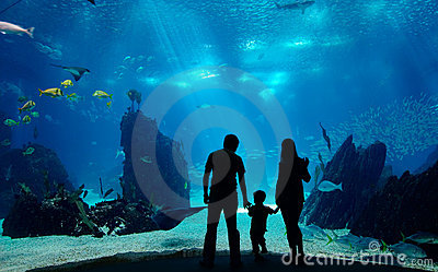 Onderwater familie