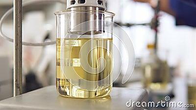 Onderzoek van zonnebloemolie in het laboratorium stock video