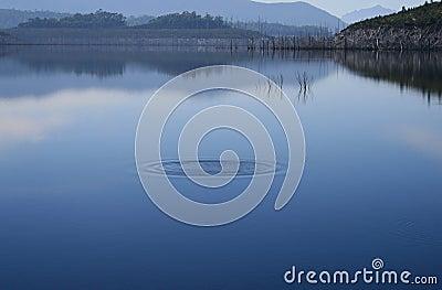 Ondinha no dia enevoado do lago imóvel,