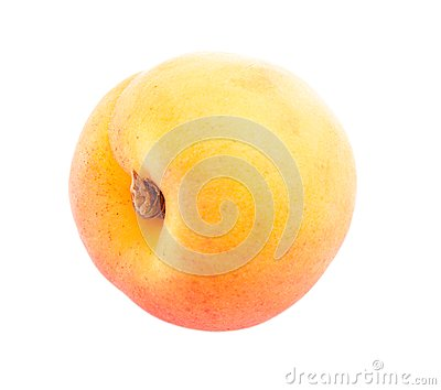 One apricot.