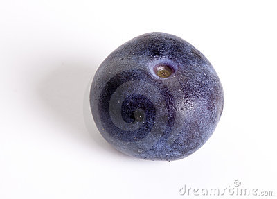One blueberry