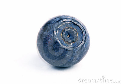 One blueberry One Blueberry