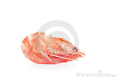 One boiled shrimp