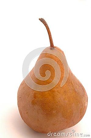 Free One Bosc Pear Stock Photo - 268100