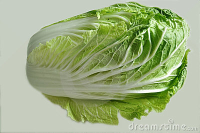 One Chinese cabbage