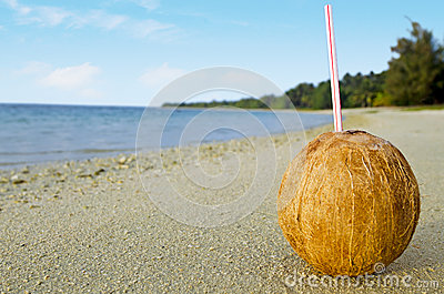 One coconut with a straw on the sandy sea shore