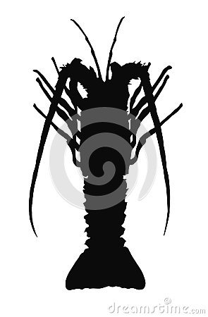 One crayfish silhouette.