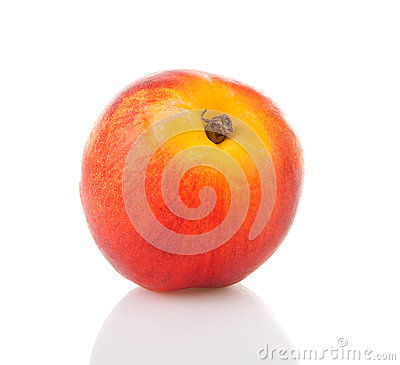 One fresh nectarine in closeup