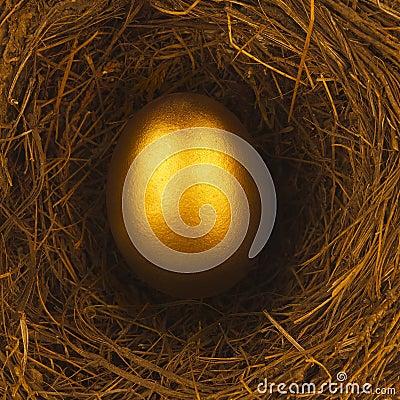 ONE GOLDEN EGG IN BIRDS NEST