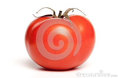 One isolated tomato