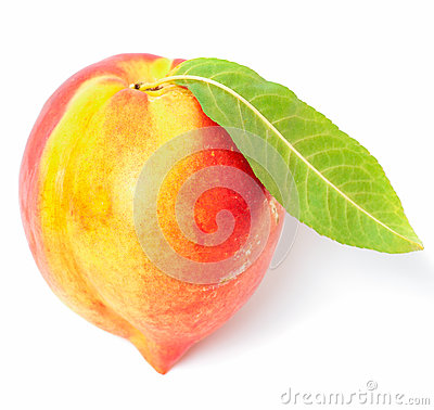 One nectarine fruit