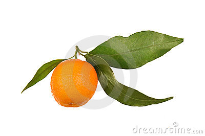 One orange with leaf