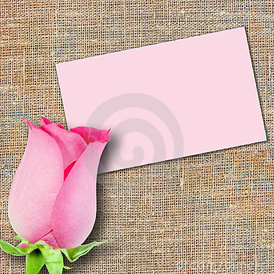 One pink rose and message-card