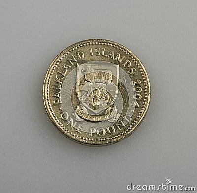 One pound of the Falkland or Malvinas Islands.