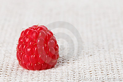One red ripe raspberry fruit, on gray linen