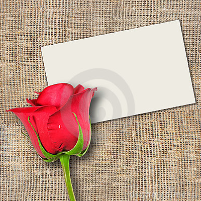 One red rose and message-card