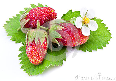 One rich strawberry fruit isolated on a white.