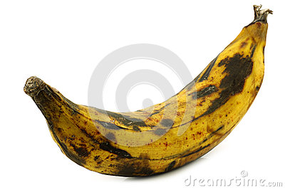 One ripe baking banana (plantain banana)